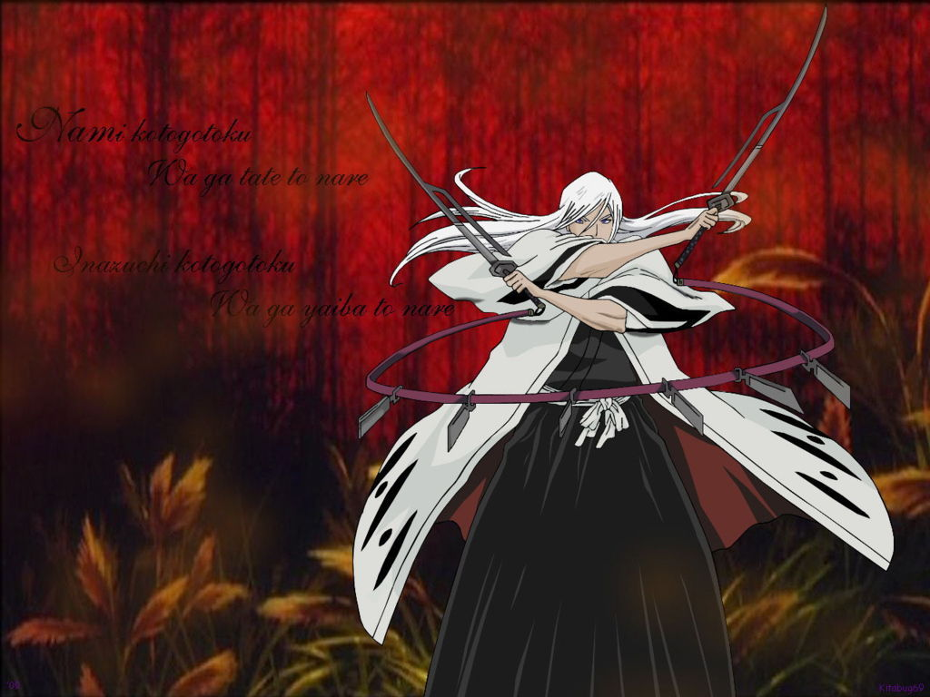 Bleach Anime Wallpaper 009