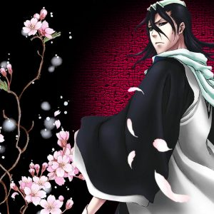 Bleach Anime Wallpaper 016 300x300