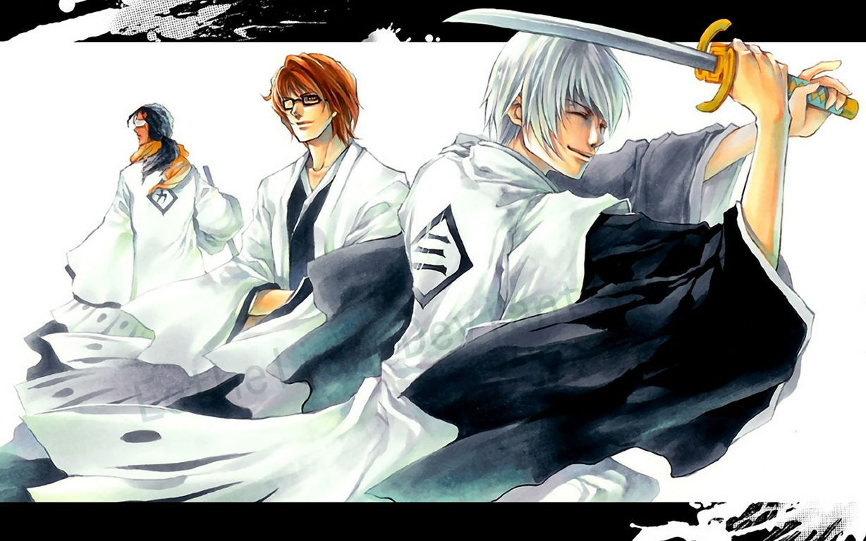Bleach Anime Wallpaper 039