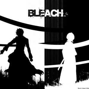 Bleach Anime Wallpaper 046 300x300