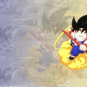 Dragon Balls Z Wallpaper 011 300x300
