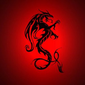 Dragon Wallpaper 005 300x300