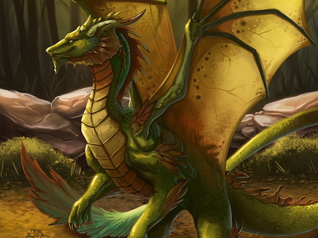 Dragon Wallpaper 011