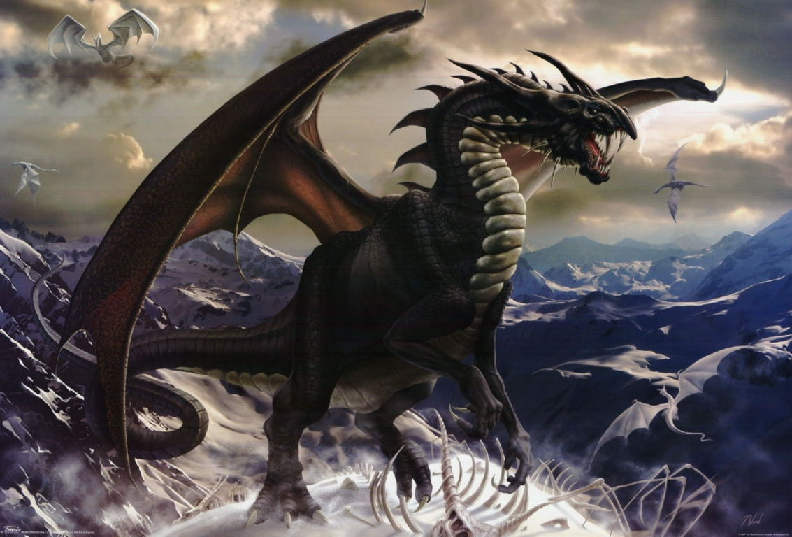 Dragon Wallpaper 034