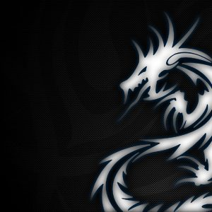 Dragon Wallpaper 048