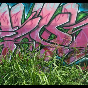 Graffiti Wallpaper 029 300x300