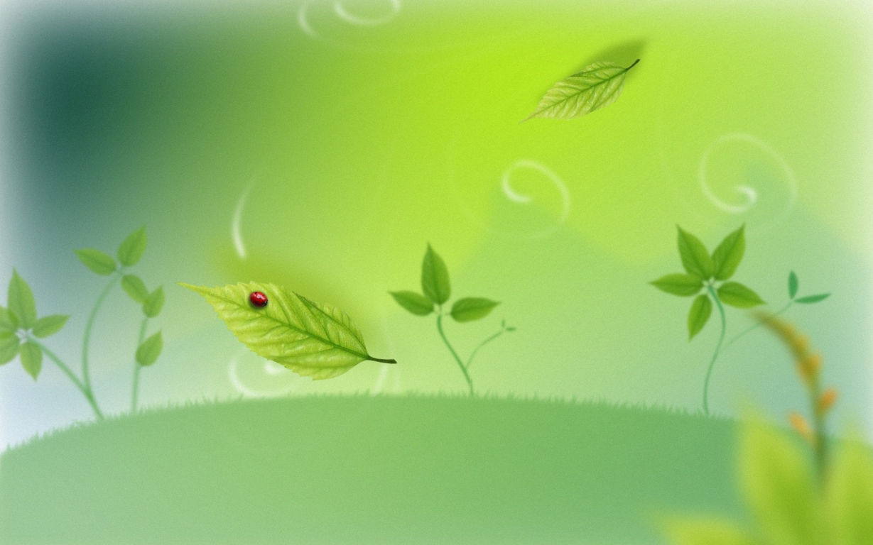 Green Wallpaper 002