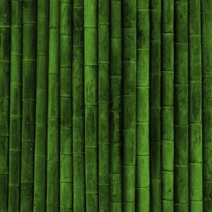 Green Wallpaper 039 300x300