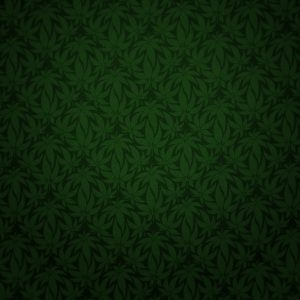 Green Wallpaper 061 300x300