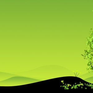 Green Wallpaper 120 300x300
