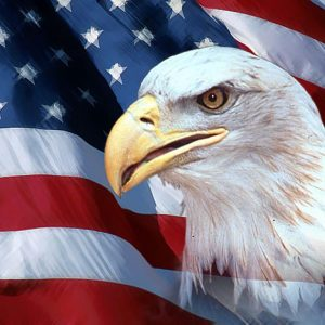 American Flag Eagle Wallpaper 004