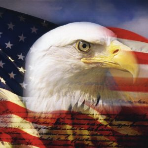 American Flag Eagle Wallpaper 005