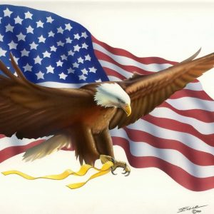 American Flag Eagle Wallpaper 006 300x300