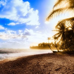 Beach Wallpaper 057