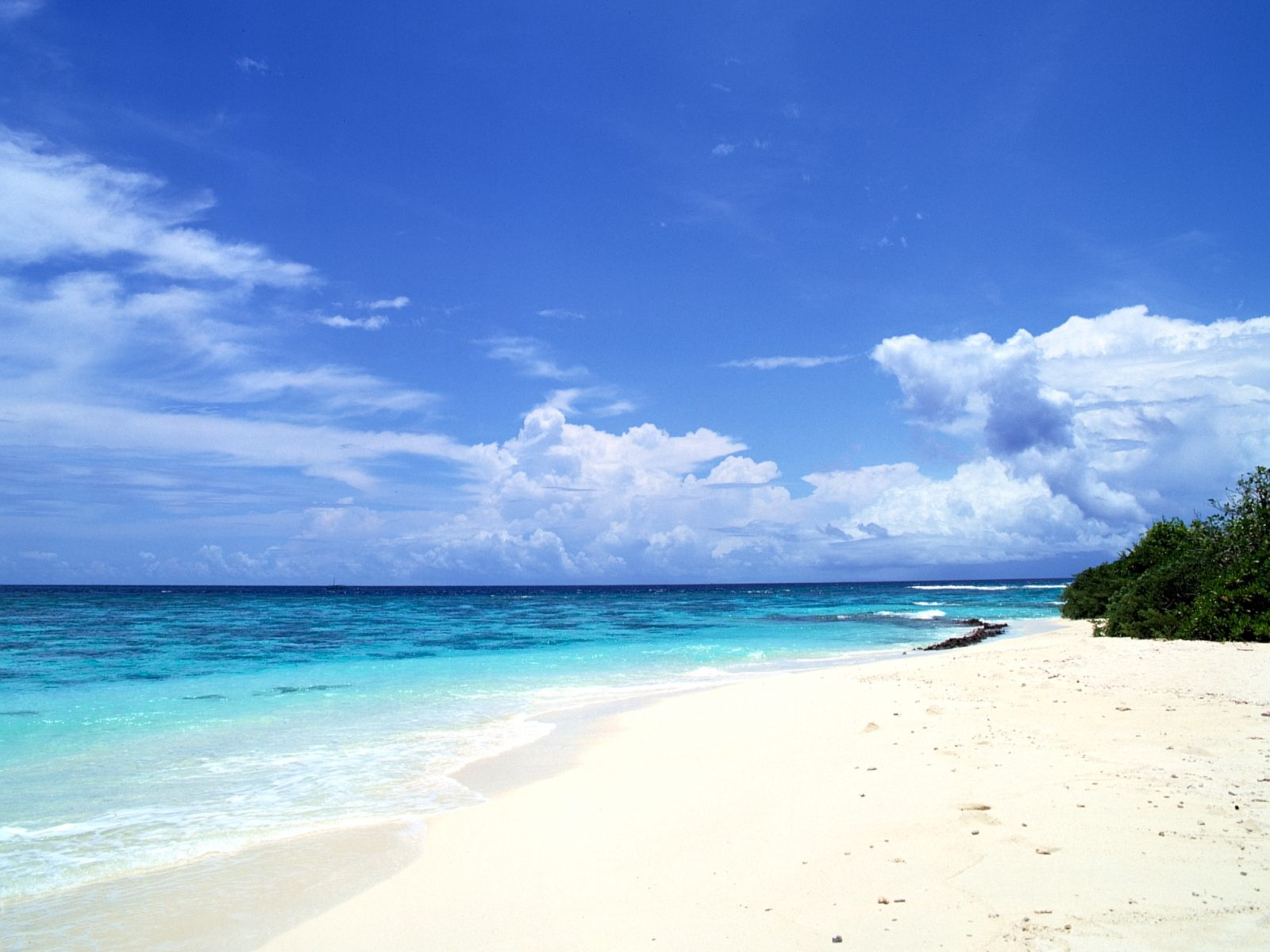 Beach Wallpaper 063