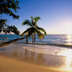 Beach Wallpaper 065 300x300