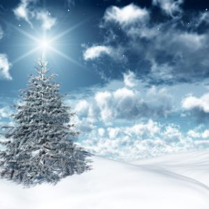 Christmas Winter Wallpaper 008