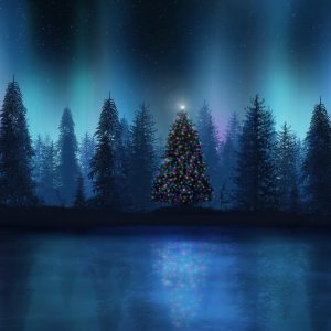 Christmas Winter Wallpaper 047