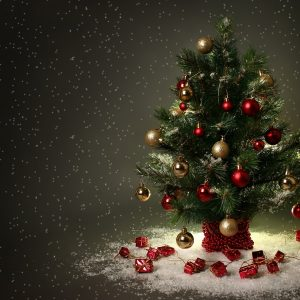 Christmas Winter Wallpaper 066