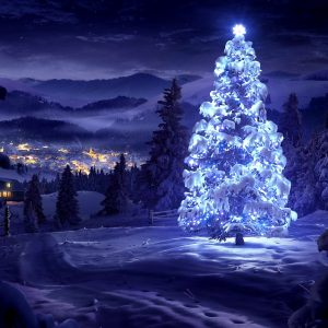 Christmas Winter Wallpaper 068 300x300