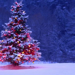 Christmas Winter Wallpaper 075