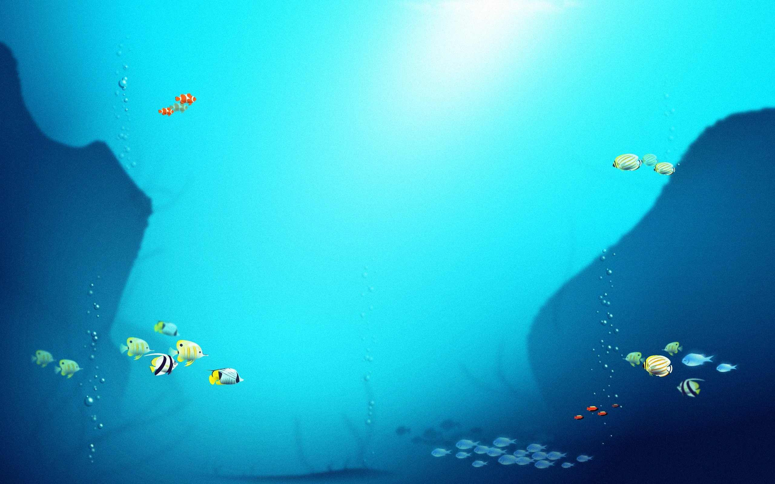 Fish Wallpaper 001