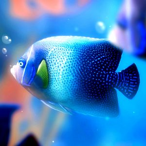 Fish Wallpaper 058 300x300