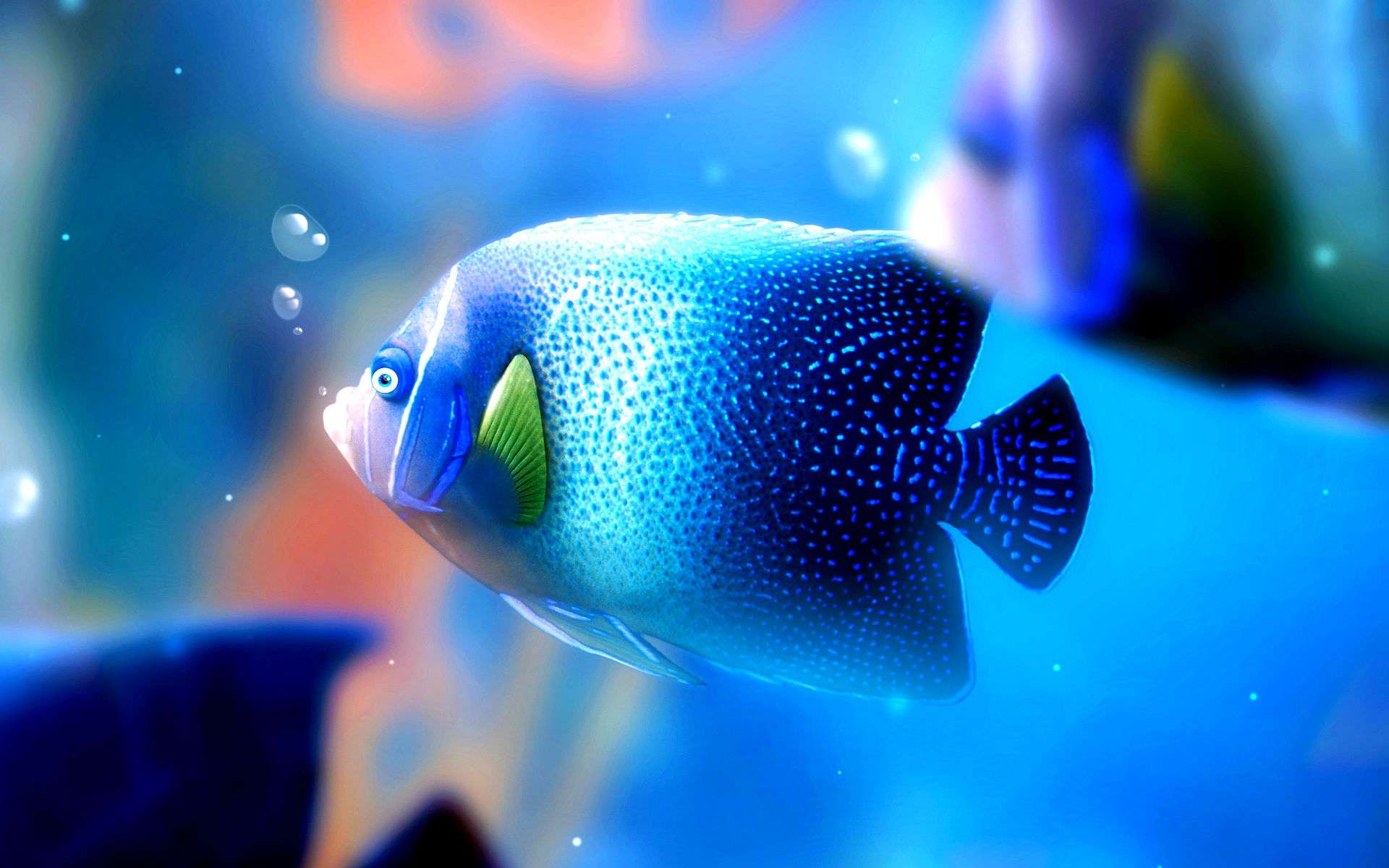 Fish Wallpaper 058