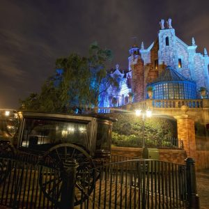 Disneyland Wallpaper 048 300x300