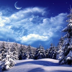 Winter Wallpaper 004 300x300