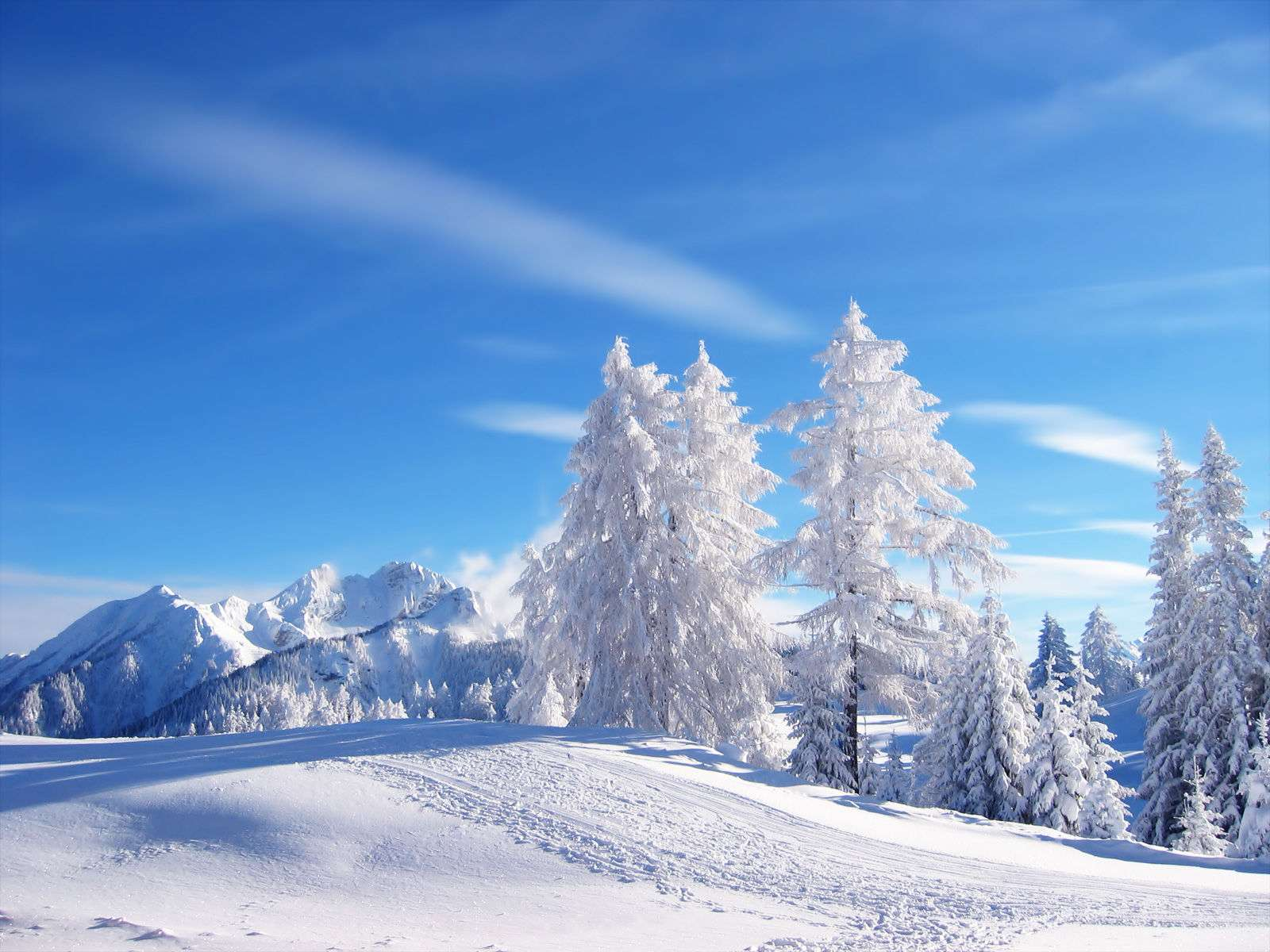 Winter Wallpaper 046