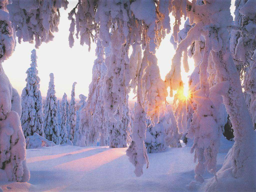 Winter Wallpaper 047