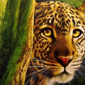 Leopar Wallpaper 10