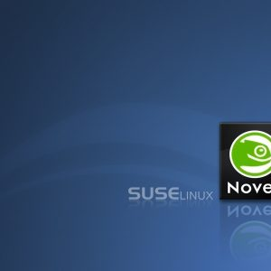 SUSE Linux Wallpaper 10