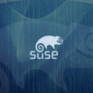 SUSE Linux Wallpaper 4