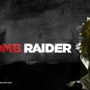 Tomb Raider 2013 Wallpaper 8