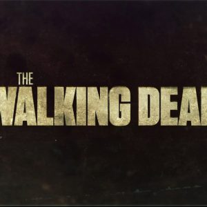 The Walking Dead Wallpaper 17 300x300