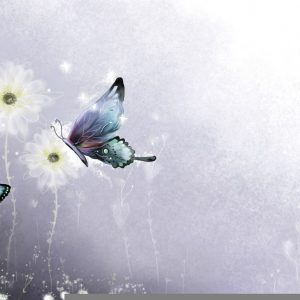 Butterfly Wallpaper 004 300x300