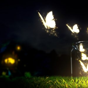 Butterfly Wallpaper 007 300x300