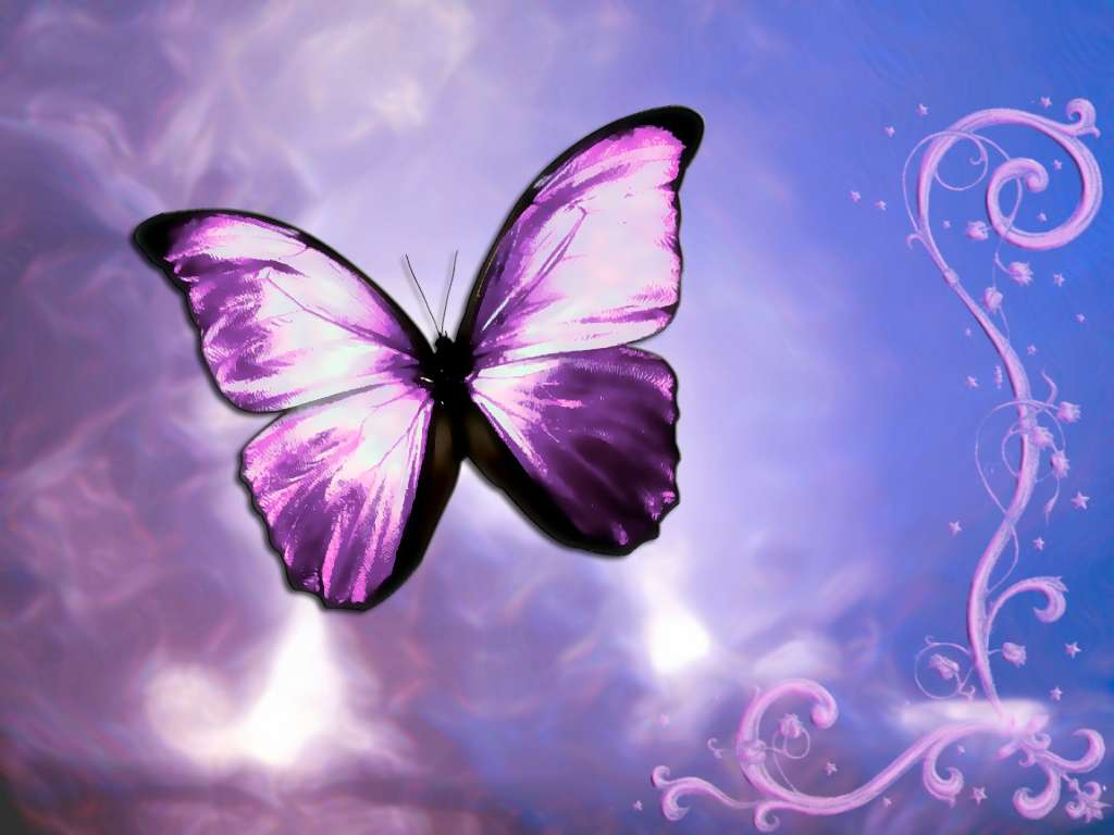 Butterfly Wallpaper 035