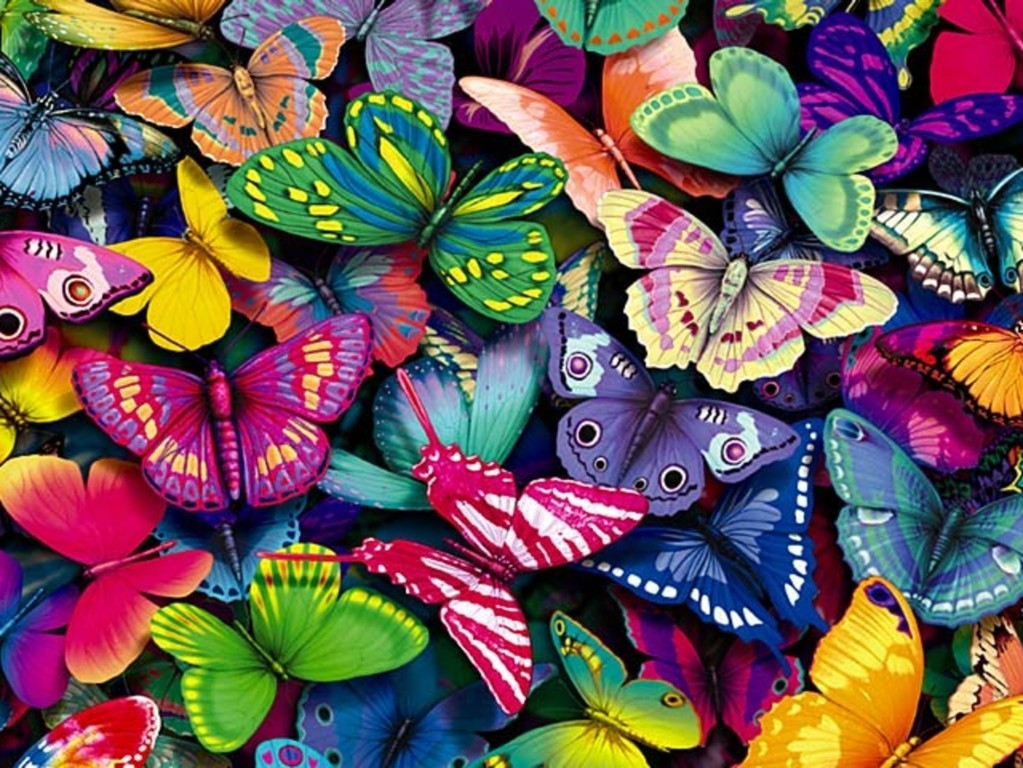 Butterfly Wallpaper 041
