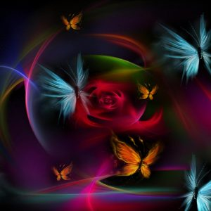 Butterfly Wallpaper 054
