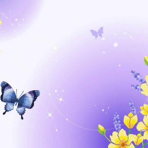 Butterfly Wallpaper 065 300x300