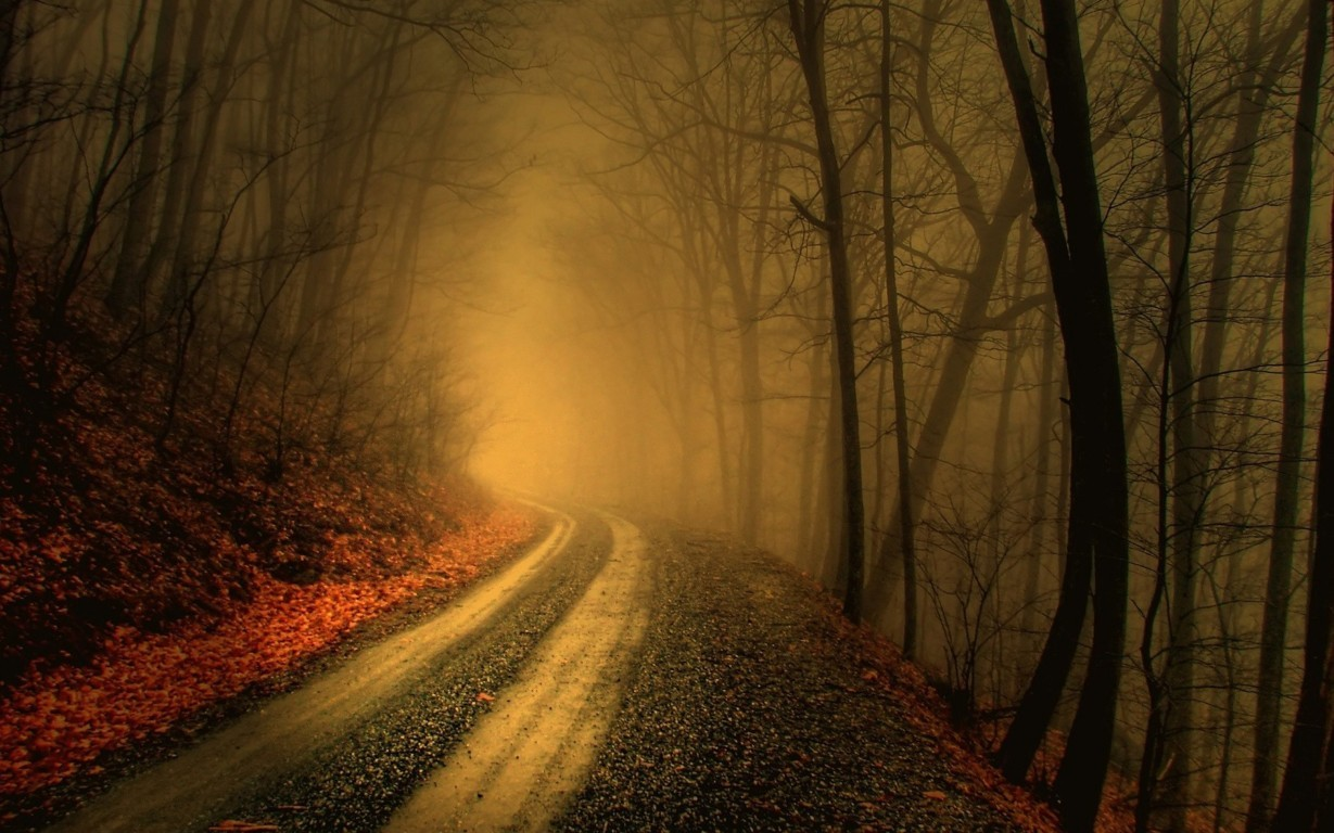 Road Wallpaper 067