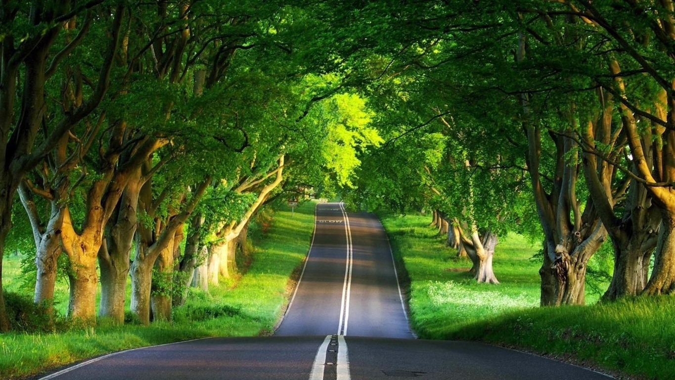 Road Wallpaper 085