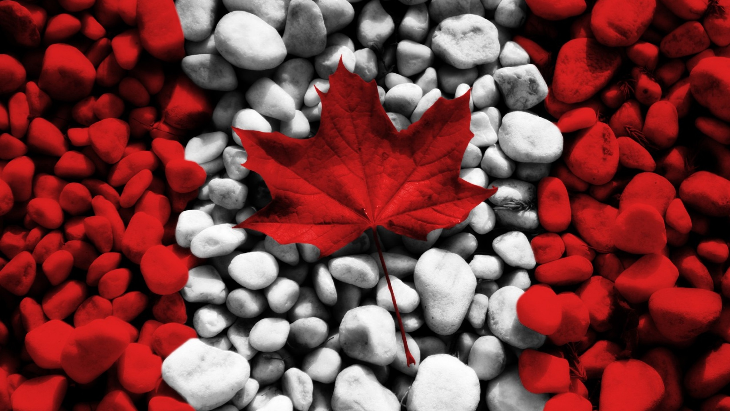 Canada Flag Wallpaper 8