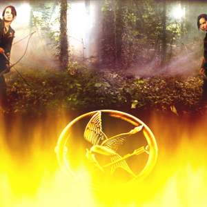 The Hunger Games Wallpaper 10