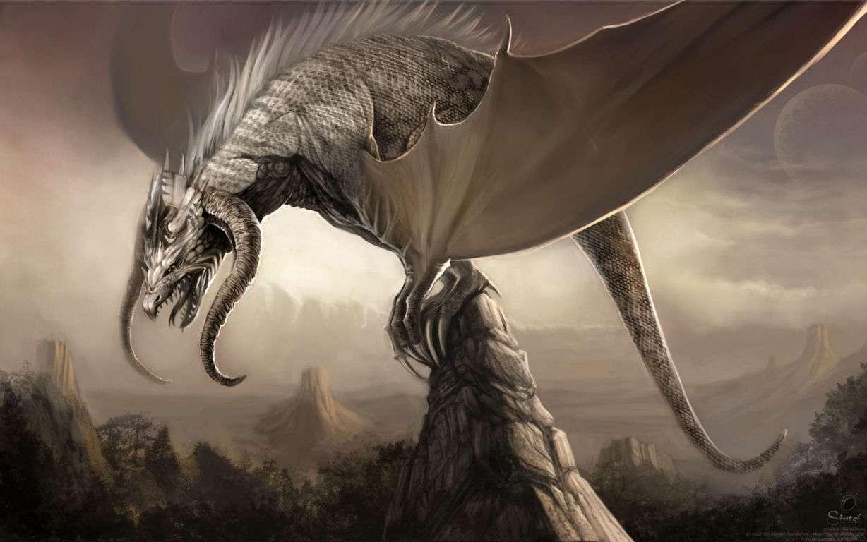 Dragon Wallpaper 040
