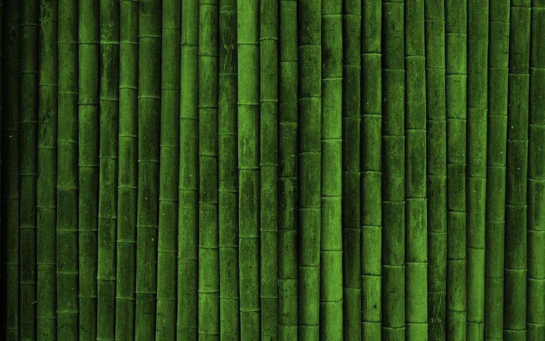 Green Wallpaper 039