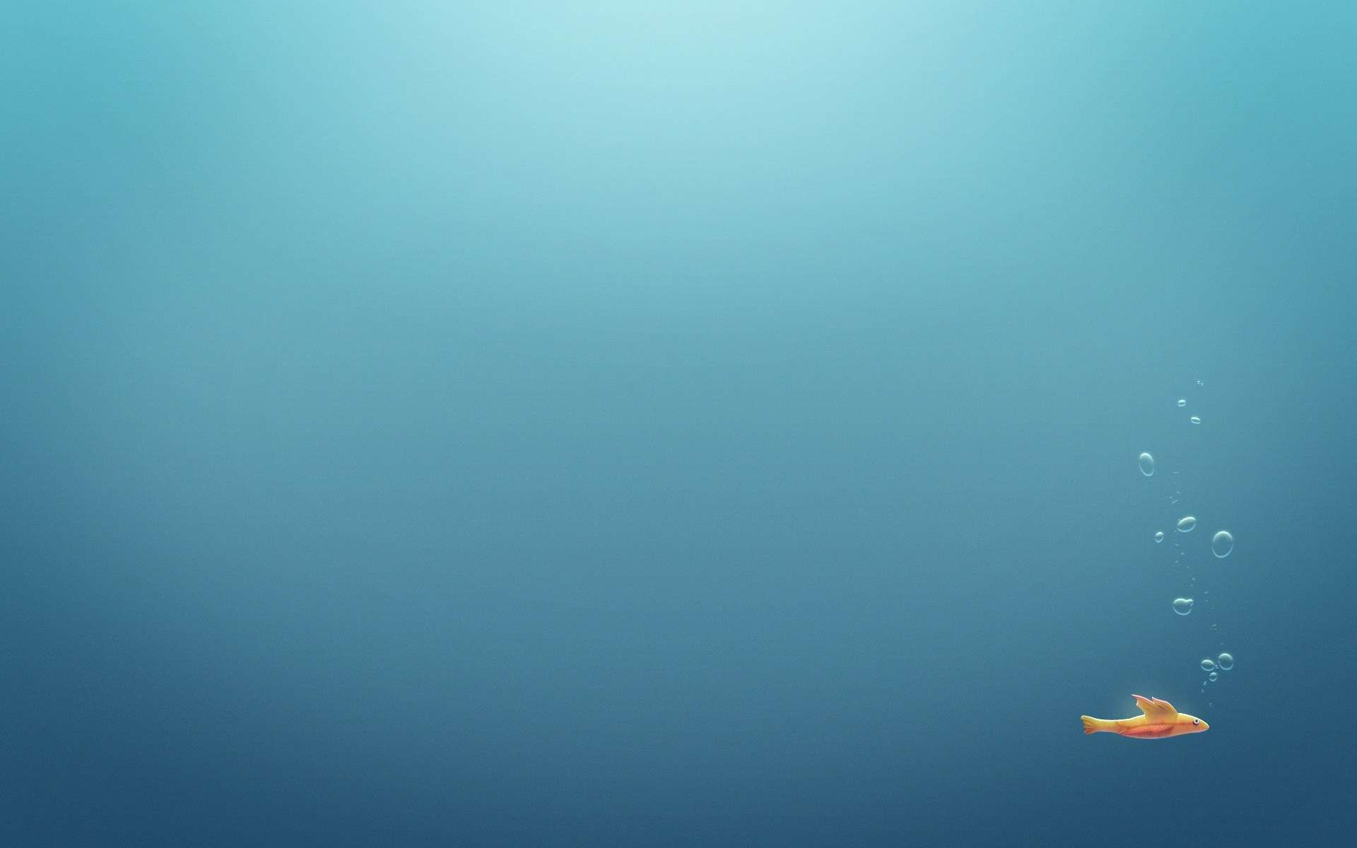 Fish Wallpaper 043